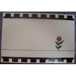 Azulejo Cecrisa 20x30 - Ref. 725