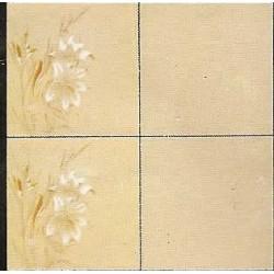 Azulejos antigo fora de linha 15x15 Cesaca Ref. 2145