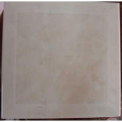 azulejo Eliane 20x20 - Ref. 688